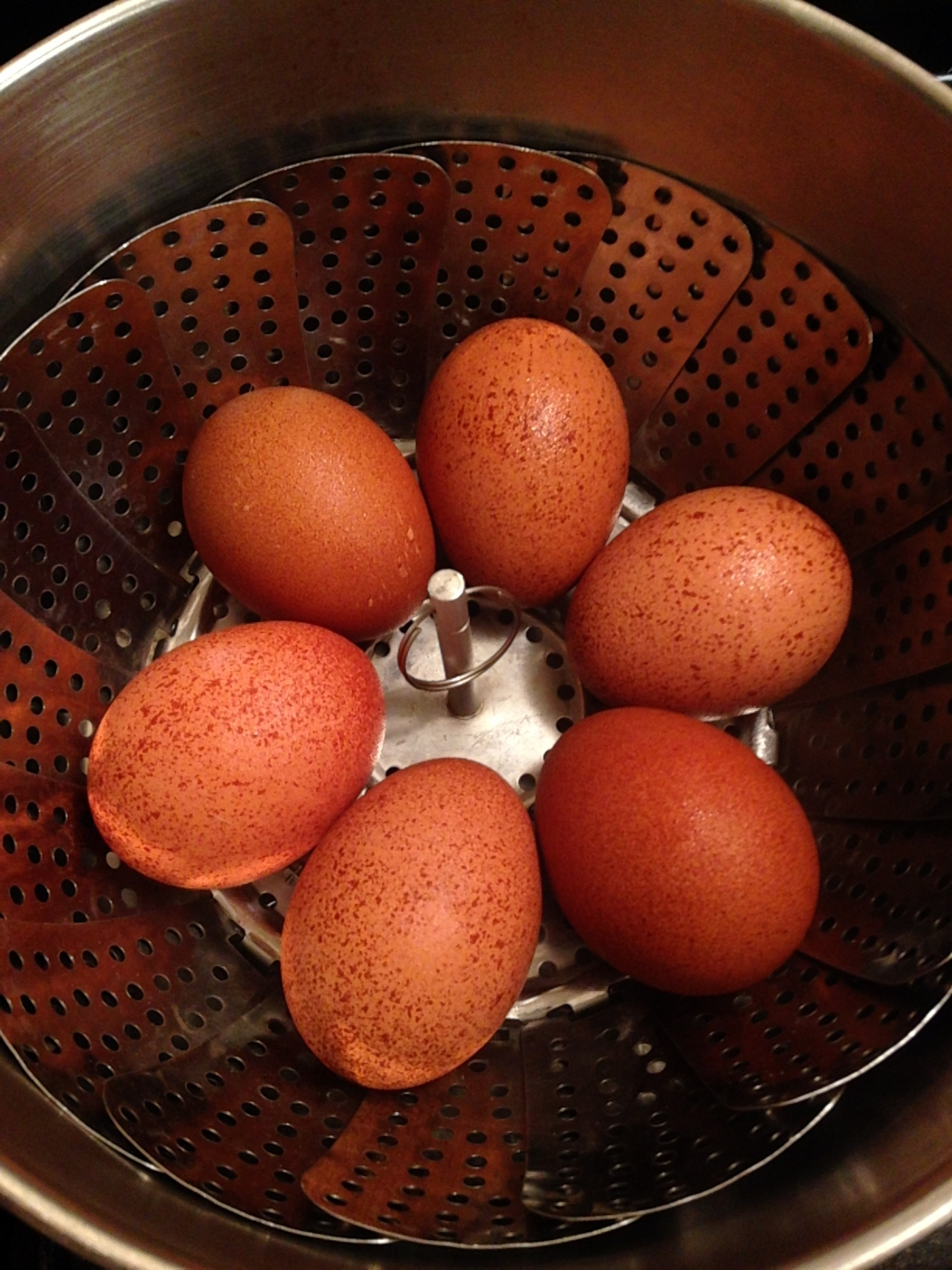 Welsummer Chicken Eggs