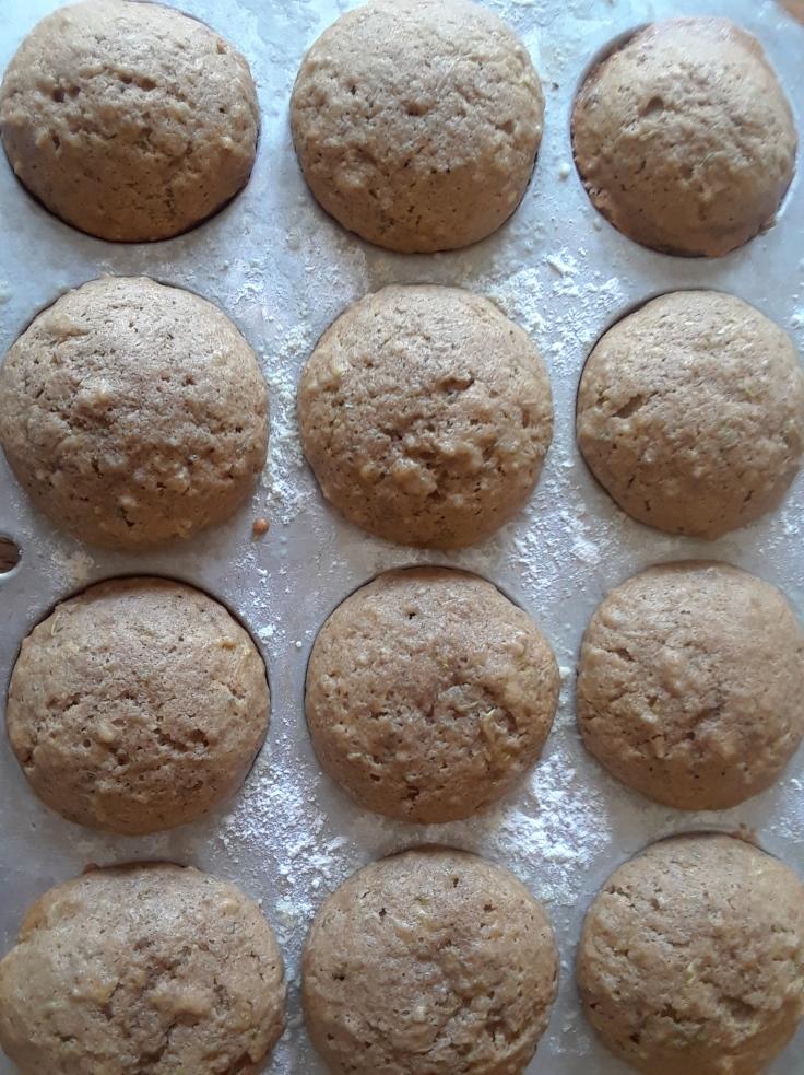 muffins zucchini in pan