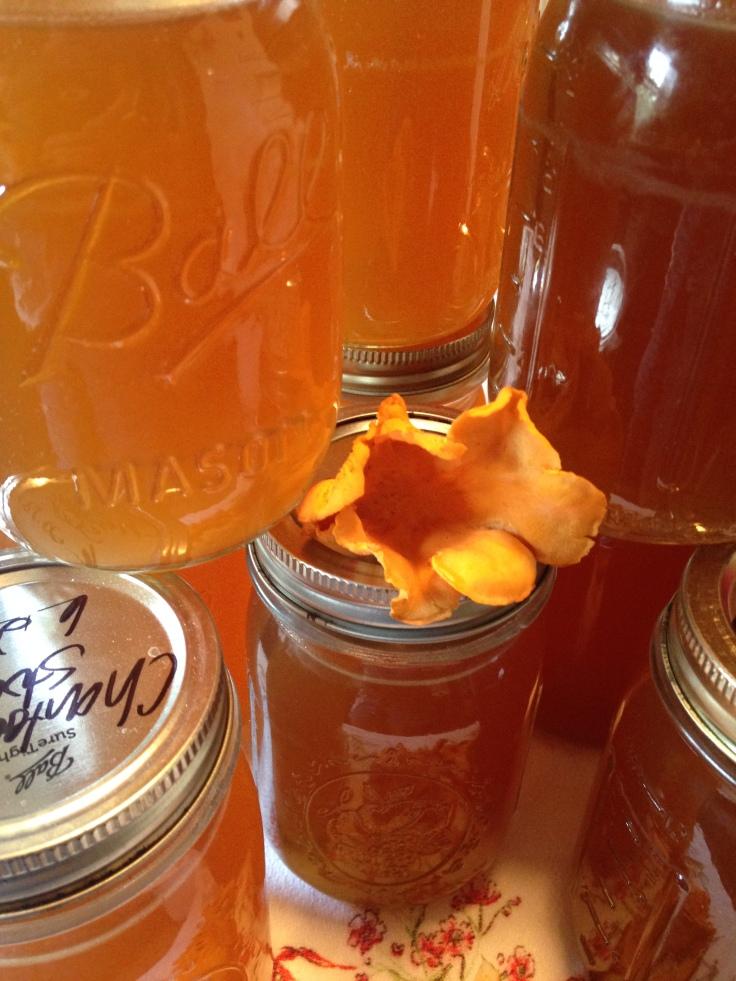 jars of mushroom broth/stock