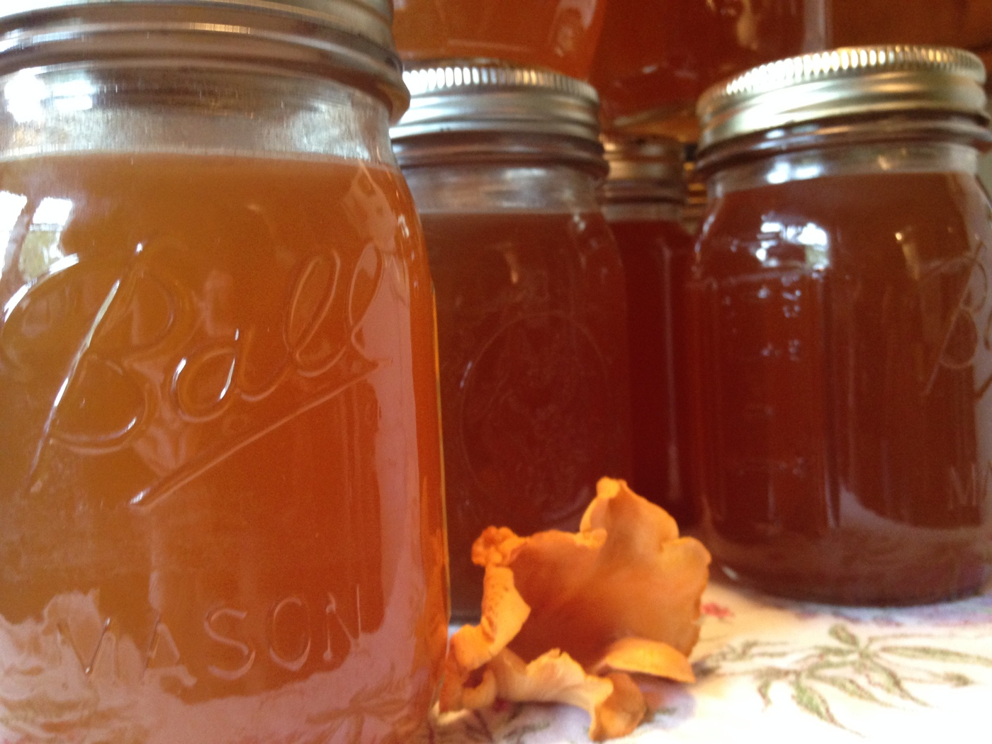 canned chanterelle stock with mushroom