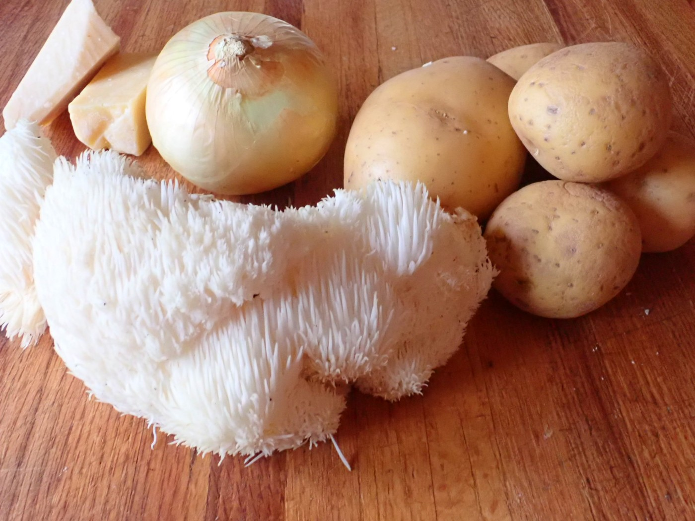 Hericium in kitchen
